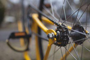 bici tour