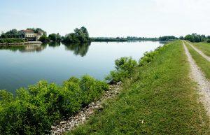 Isole della laguna Veneziana e Delta del Po 9