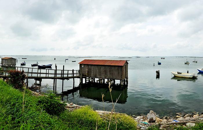 Laguna Veneziana e Delta del Po