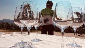 prosecco wine tour bici