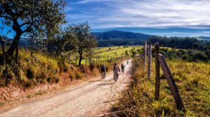 tour collina in bici